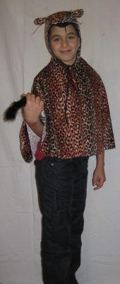 Карнавален костюм - Тигърче
